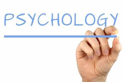 AP心理学课程内容解析,难度如何?