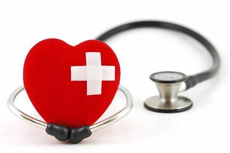 想申请英国医科类专业,IB选课怎么选?