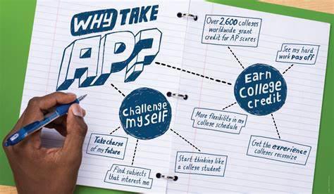 AP课程体系