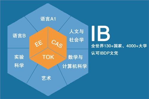 ib课程是什么意思
