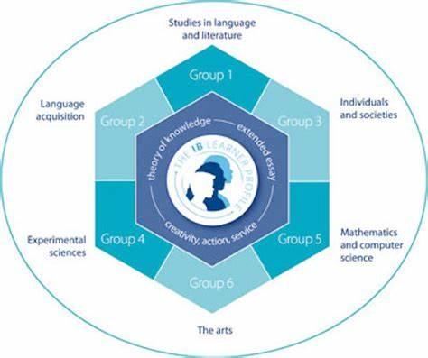 IB课程选课指导,各大学科组科目特点是什么?
