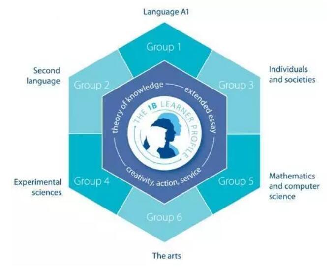 IB课程选课应该如何考虑?