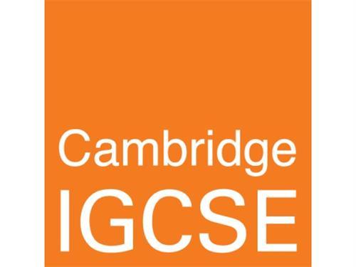 学习IGCSE有用吗,和其他中学课程相比如何?