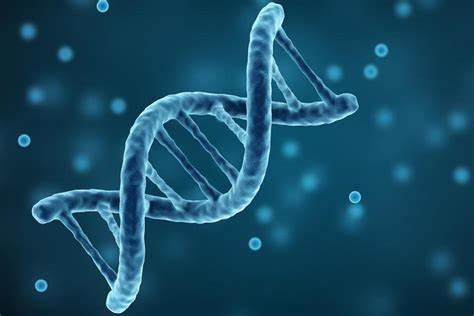 AP生物课程学习中的三大难点解析,到底我们该如何学好生物?