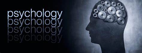 A-level心理学备考诀窍分享