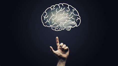 GCSE心理学知识点目录,包括哪些内容?
