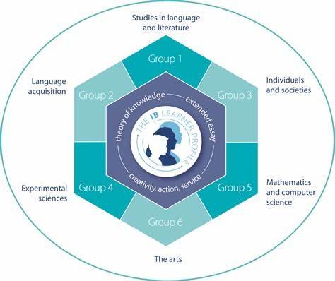 IB课程选课方案指导