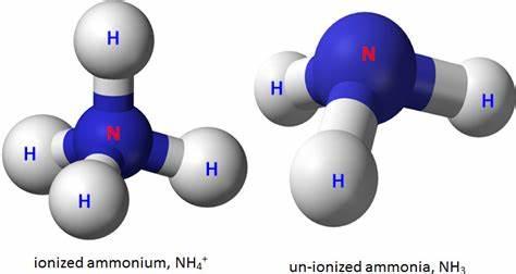 ALevel化学氢化物常见反应方程式整理