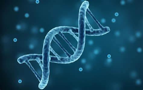ALevel生物课程学习推荐书单分享