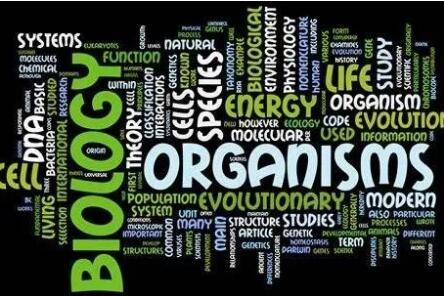AP生物学习中应该注意什么?