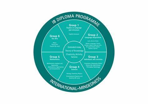 各学科组都有哪些常见的IB科目选择?