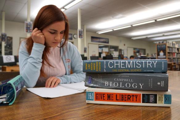 AP考试评分标准解析,哪些学科更好拿高分?