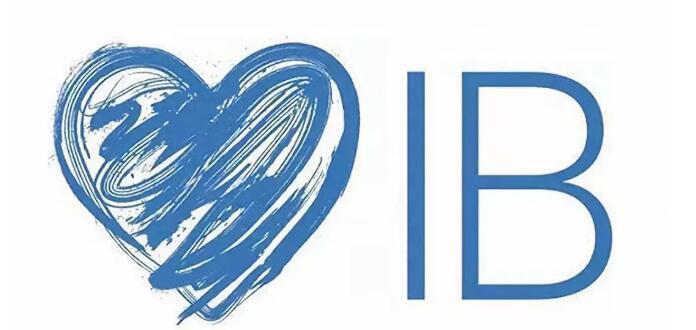 如何学好ib课程?这些技巧和建议请收下