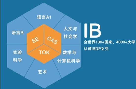 IB课程体系.jpg