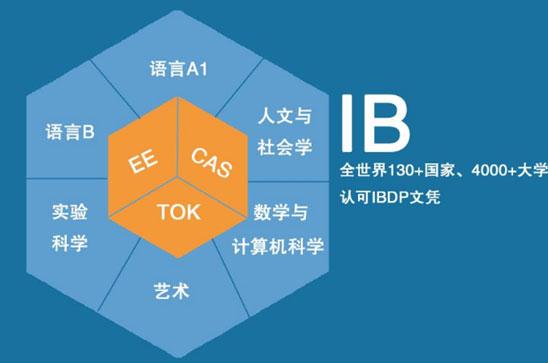 IB课程.jpg